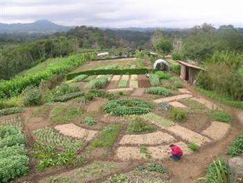 100677 Curso de Agroecologia Gratis etec Curso Técnico Gratuito de Agroecologia ETEC 2013