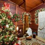 110147 Dicas Para Decorar Árvore De Natal Fotos 31 150x150 Dicas Para Decorar Árvore De Natal, Fotos