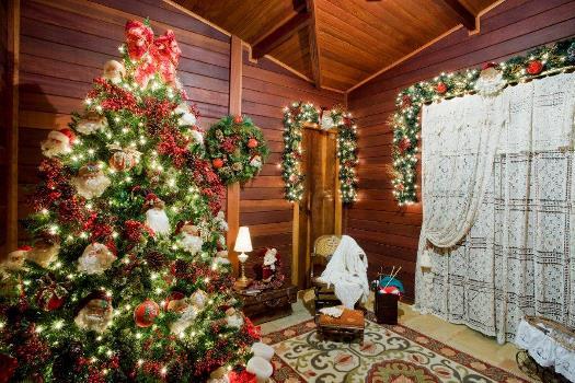 pinheiro é o ponto de destaque da decoração de natal foto