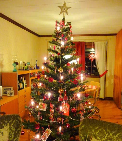 decorar uma arvore de natal : decorar uma arvore de natal: decorar árvore de natal fotos3 150×150 Dicas Para Decorar Árvore De