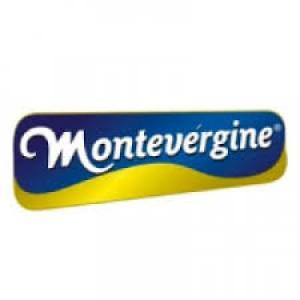 155792 monte 300x300 Trabalhe Conosco Montevérgine