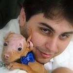 1625 filhote pitbul23445 150x150 Fotos de cães da raça Pitbull