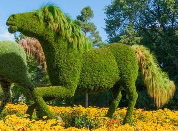 imagens de enfeites para jardim:16409 Fotos de Esculturas e Enfeites para Jardim 24 150×150 Fotos de