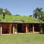 Telhado com gramado