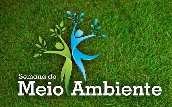 Dia Mundial do Meio Ambiente sementes bailarinas