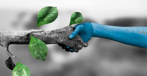 Dia Mundial do Meio Ambientede mãos dadas com a natureza