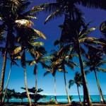 Fotos de Praias Brasileiras-2