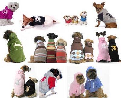 Roupas para cachorros – Modelos, preços, onde comprar
