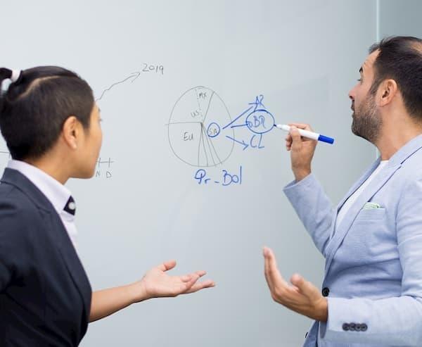 Aulas de Reforço Escolar Online professor e aluno