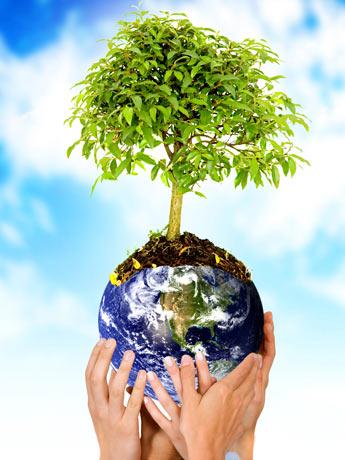 Como Proteger a Natureza e Ser Ecológicamente Correto