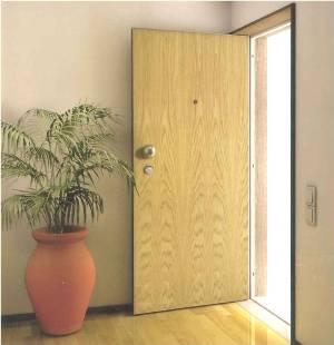 Portas De Entrada Para Casa – Modelos, Fotos