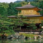 Planta De Casa Oriental