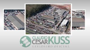 Leilao-de-Veiculos-em-Curitiba-Leilao-de-Carros-PR