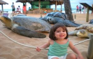 Dicas De Resorts Para Crianças