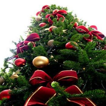 Onde Comprar Enfeites de Natal, Mercado Livre