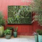 jardim-vertical-fotos-passo-a-passo