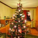 Em geral a decoração é parecida, e você pode comprar kits com enfeites para sua árvore de Natal. (Foto: Divulgação)