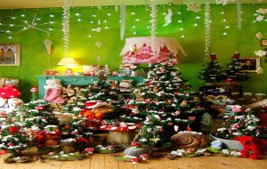Enfeites De Natal, Idéias, Fotos