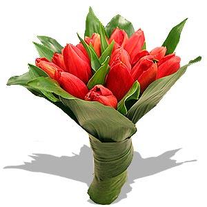 Bouquet De Tulipas Preços