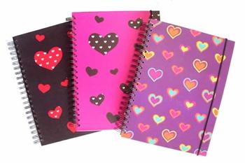 Cadernos baratos Americanas