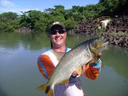 Melhores Locais para Pesca no Brasil