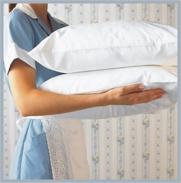 Travesseiros de Pena de Ganso, Preços, Onde Comprar