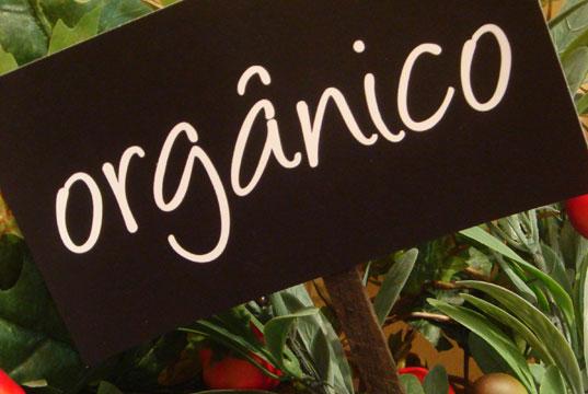 Benefícios dos Alimentos Orgânicos para Saúde