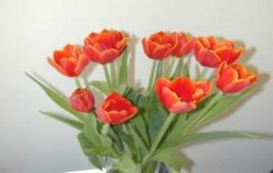 Flores Artificiais Para Decoração