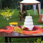 Dicas de decoração para casamento no campo 2