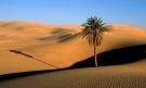 Fotos de Pontos Turísticos no Mundo deserto do saara