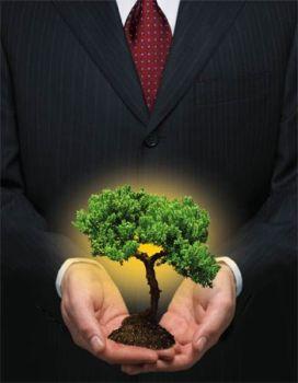 Saiba como Uma Empresa Pode ter Ações Sustentáveis