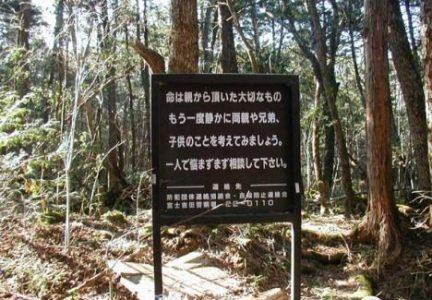 Roteiro Macabro: Conheça os Lugares Mal Assombrados Visitados pelos Turistas