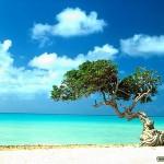 Ilhas paradisíacas para visitar: roteiros