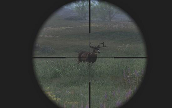 Seja um caçador profissional neste game