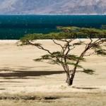 Lago Turkana, Quénia (Foto:Divulgação)