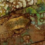 A cor amadeirada serve de camuflagem perfeita para a ocasião.