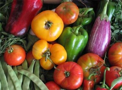 Alimentos orgânicos – benefícios para a saúde