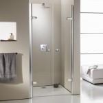 Escolha um box charmoso e que se ajuste as necessidades do banheiro.