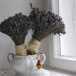 As flores secas podem decorar qualquer ambiente da casa.