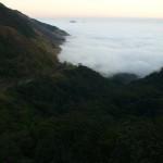Floresta no meio das montanhas (Foto:Divulgação)
