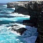 Ilhas Malvinas – Fotos, roteiro de viagem4