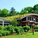 Propriedade conta com telhado verde e muitas janelas