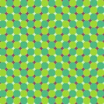 Ilusão de ótica de movimento (Foto:Divulgação)
