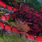 Santuário Xintoísta em Tsuwano, Japão (Foto: Divulgação)