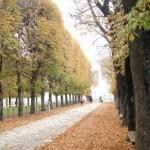 Paris no Outono (Foto: Divulgação)