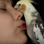 Um beijo de amizade e amor