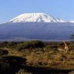 Kilimanjaro - Tazânia - África