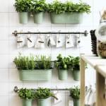 Como montar uma horta em casa - Fotos e modelos 13