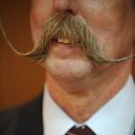 Barbas e bigodes criativos - Com pontas compridas e finas