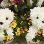 Arranjo de flores surpreendente